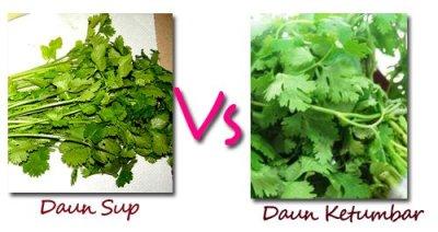 Tahukah anak zaman sekarang yang tak pernah kepasar atau kedapur membedakan antara daun sup(seledri) dengan daun ketumbar? /image by google